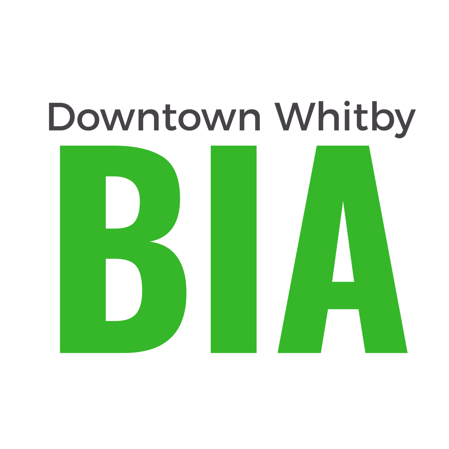 Two New Committees formed by the BIA Board of Management
